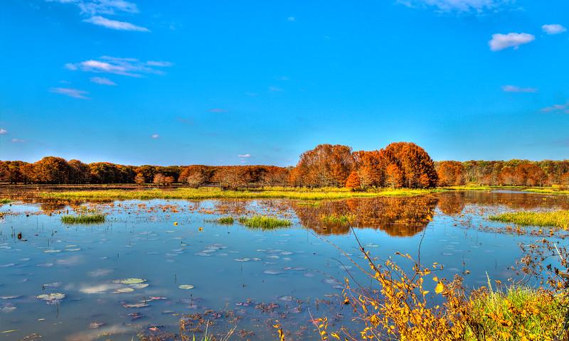 Bluff Lake - Noxubee Wildlife Refuge
