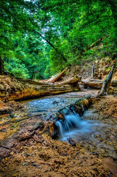 Stream at Red Bluff