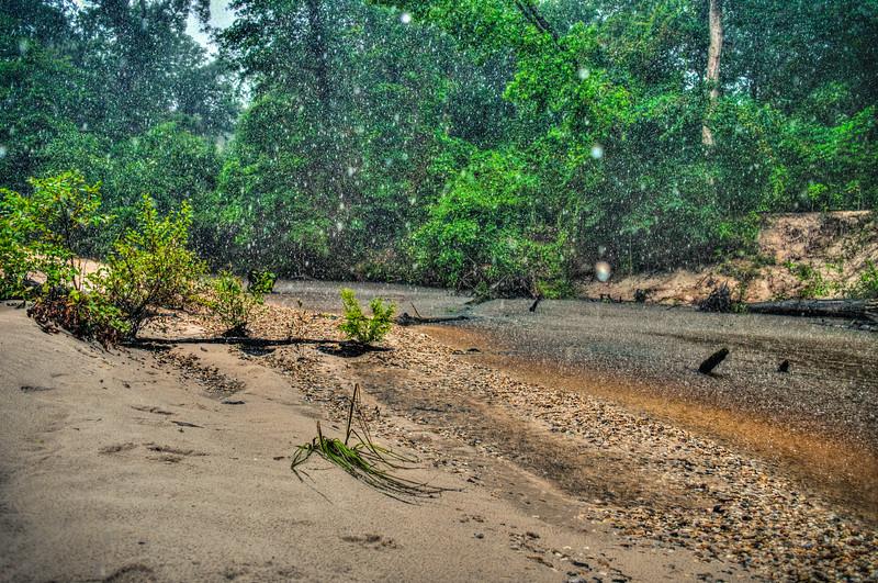 Rainy Creek - Poplarville
