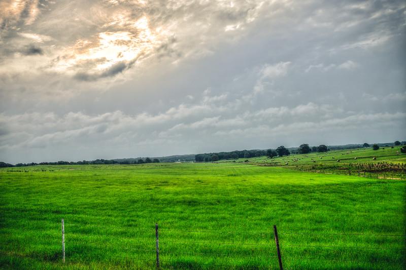 Green Field - Carroll County